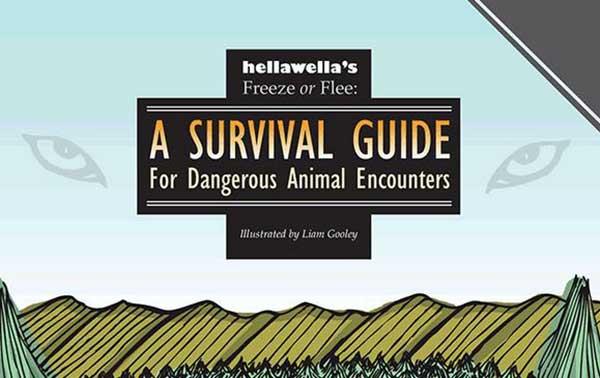 wikd animal encounters