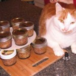 How To Make Your Own Pet Food