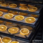 Dehydrated Oranges & How to Use Them