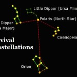 Survival Constellations