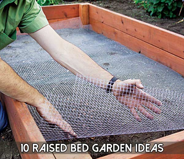 10 Raised Bed Garden Ideas The Prepared Page 187 The