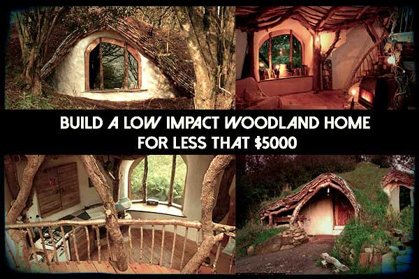 Low impact inexpensive woodland home the prepared page for Build a house for under 5000 dollars