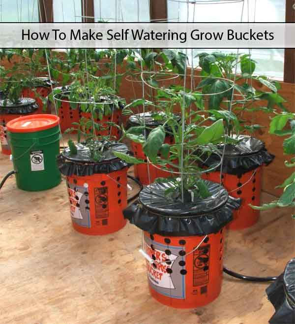 Diy self watering alaska grow buckets the prepared page Self watering 5 gallon bucket garden
