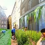 Urban Homesteading Resourcefulness