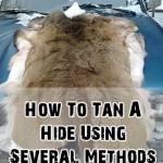 Several Methods for Tanning Hides