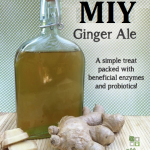 MIY Natural Ginger Ale