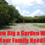 How Big A Garden Do You Really Need?