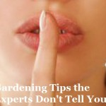 Gardening Tips the Experts Don't Tell You