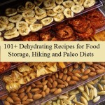 101+ Dehydrating Recipes