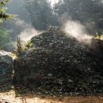 Starting Your Compost Pile