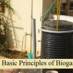 The Basic Principles of Biogas