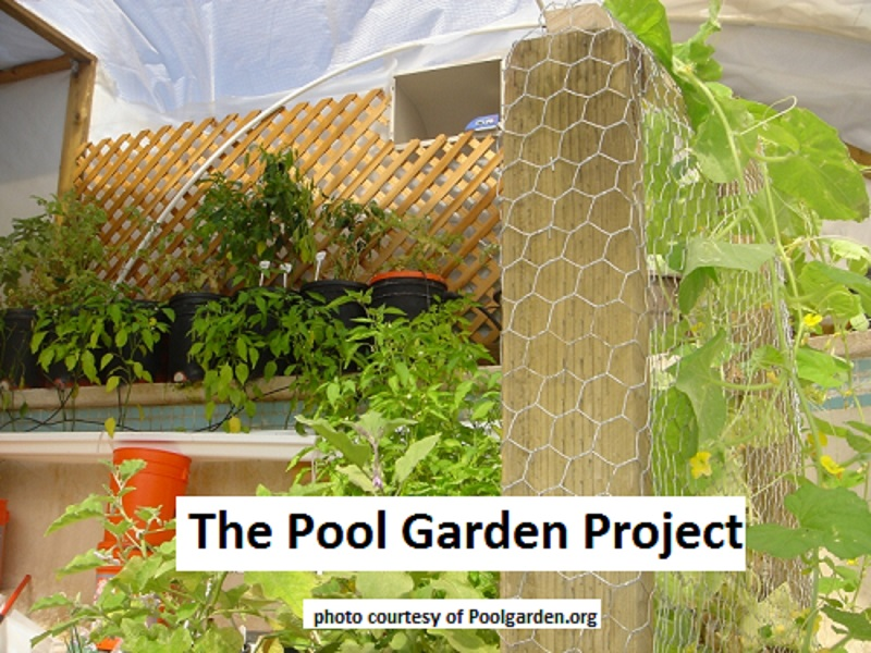 Garden pool unlimited food supply the prepared page for Gardens pool supply