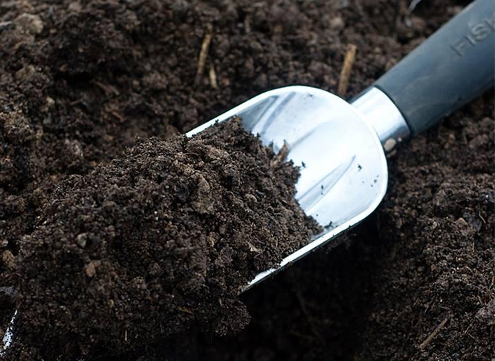 Healthy garden soil the prepared page - Best vegetable garden soil amendments ...