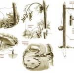 Primitive Traps & Snares