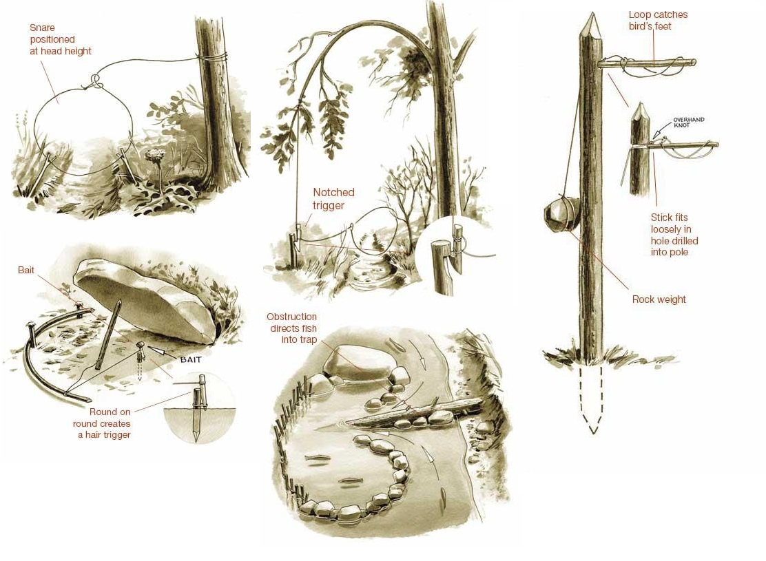 Primitive traps snares the prepared page for How to make a fish trap for big fish