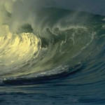 Tidal Wave Survival