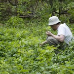 Safety Rules for Foraging