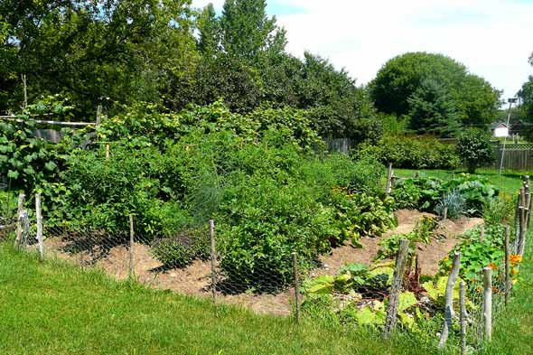How Much Will Your Garden Produce The Prepared Page