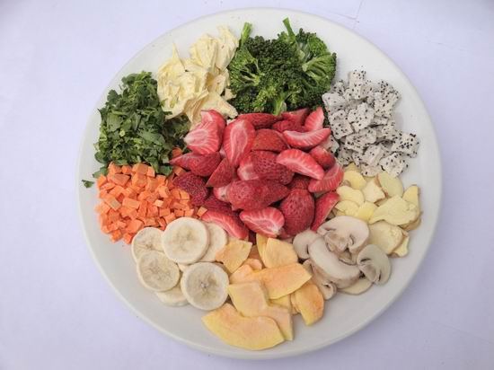 DIY Freeze Drying