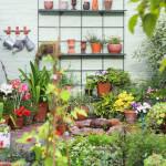 Clever Garden Tricks
