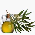80 Amazing Uses for Tea Tree Oil