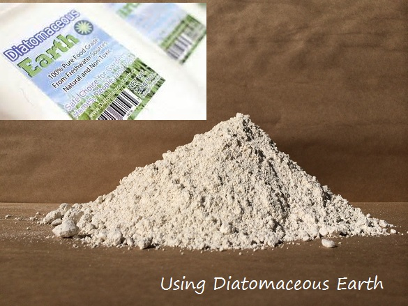 Using Diatomaceous Earth