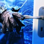 Tips for Surviving A Home Invasion