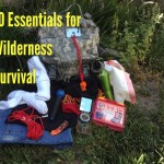 Wilderness Survival Essentials