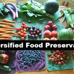 Diversified Food Preservation