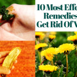 Natural Wart Remedies