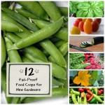 12 Easy To Grow Veggies For Beginners