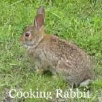 Cooking Rabbit