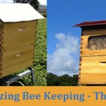 Revolutionizing Bee Keeping – The Flow Hive