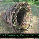 DIY Self Sustaining Passive Fish Trap