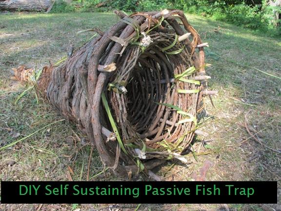 Diy self sustaining passive fish trap the prepared page for Diy fish trap