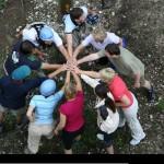 Build a Survival Team