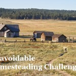 Unavoidable Homesteading Challenges