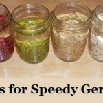 Soak Seeds for Speedy Germination