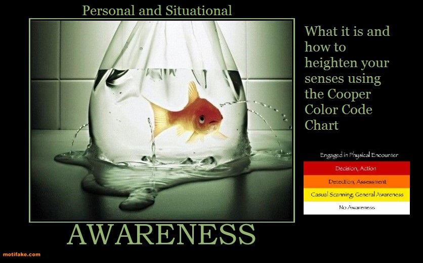 situational awareness Its meaning is how we, as humans, interpret and manage the  in the wild, dr  hediger, in his book wild animals in captivity, introduced several.