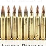 Do's & Don'ts Ammo Storage