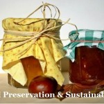 Food Preservation And Sustainability