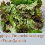 Apply a Financial Strategy to Your Garden