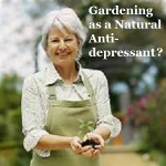 Is Gardening a Natural Anti-Depressant?