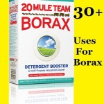 30+ Uses for Borax