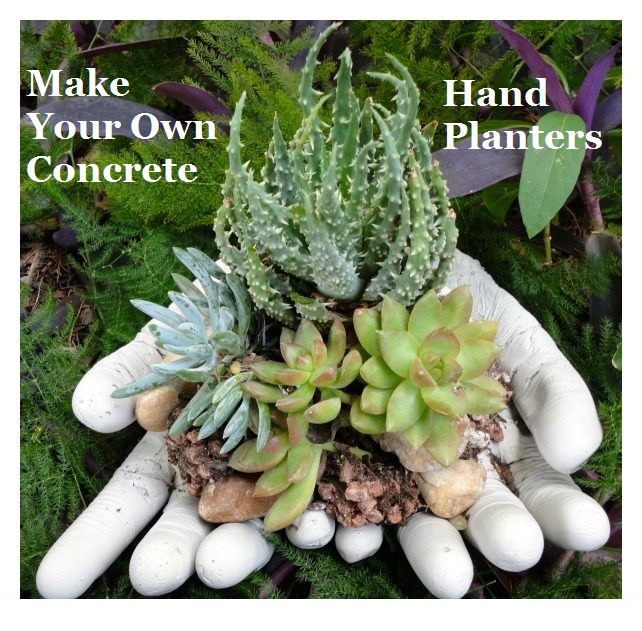 Make your own concrete hand planters the prepared page for Make your own cement