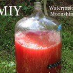 MIY Watermelon Moonshine