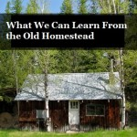 What We Can Learn From the Old Homestead