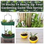 Spring Garden Hacks