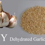 MIY Dehydrated Garlic
