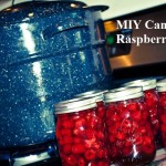 MIY Canned Raspberries